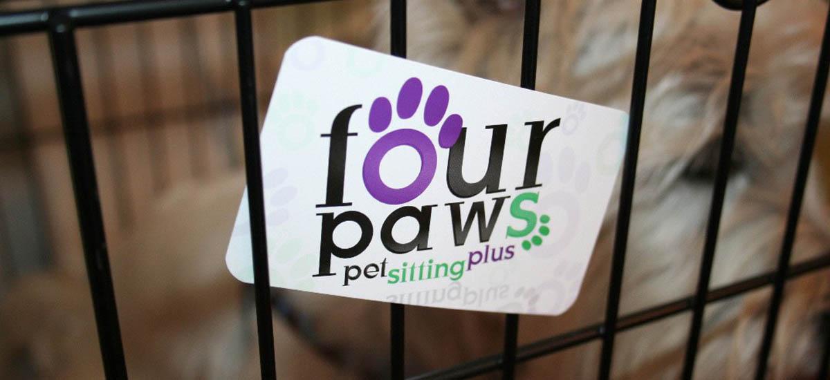 Four Paws Branding